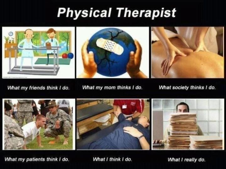 Physical Therapy funny college subjects